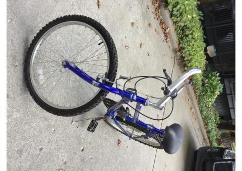 Girl 24 in. Mountain Bike